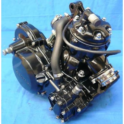 HONDA ATC TRX 250R ENGINE MOTOR
